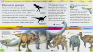 Dinosaur groups