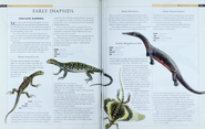 Early Diapsids 1