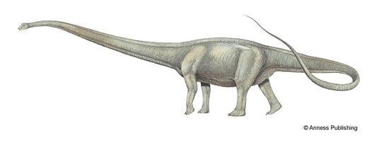 Mm-mamenchisaurus-illustration-big.jpg