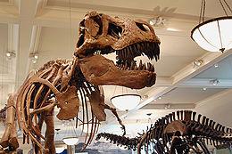 List of all dinosaur genera