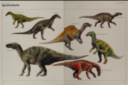 Iguanodontid collection