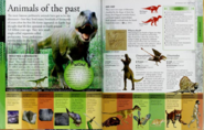 Animals of the past