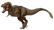 Illustration of a fully grown Tyrannosaurus rex