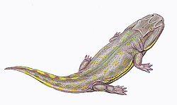 Clamorosaurus