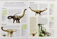 Cretaceous miscellaneous titanosaurs
