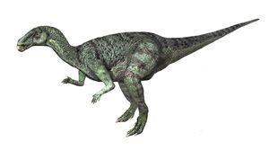 Camptosaurus dispar.jpg