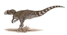 Chuandongocoelurus