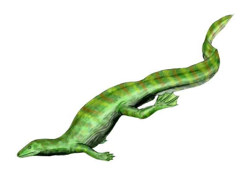 Hovasaurus