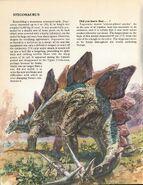 Stegosaurus Private Lives of Animals Prehistoric Animals