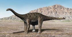 Spinophorosaurus NT.jpg