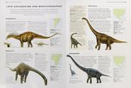 Cretaceous diplodocoids and brachiosaurids