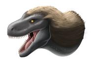 Tyrannosaurus head by lordstevie-dc8js8s