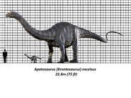 Jurassic park apatosaurus size chart by brenton522 dapb3vl-fullview