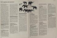 Early elephant and mastodon facts