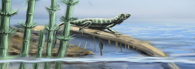 Aphelosaurus