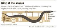 Size Comparison of Titanoboa