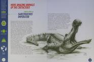 Bumper Sarcosuchus