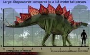 Stegosaurus-size