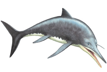 Barracudasaurus