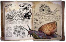 800px-Achatina Dossier.png