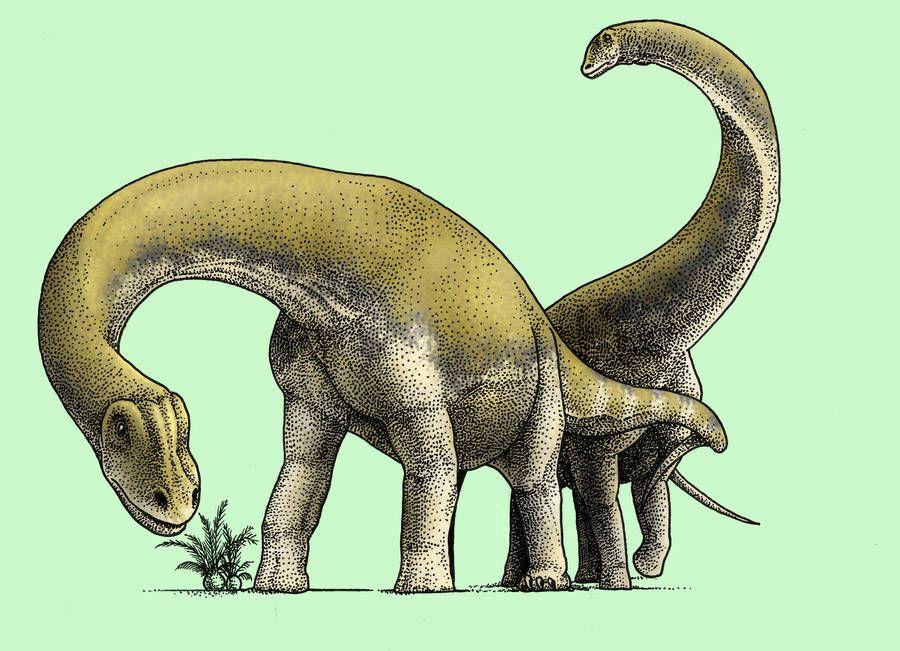 Choconsaurus