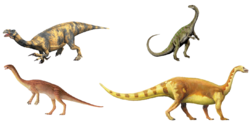 Prosauropods.png