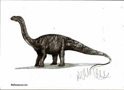 Bellusaurus sui by teratophoneus-d4wz82z.jpg