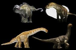 Sauropodomorpha.png