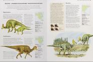 Cretaceous lambeosaurine hadrosaurids 2