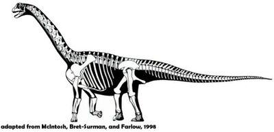 Oplosaurus.jpg