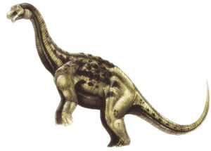 Aeolosaurus2.jpg