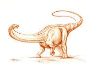 Apatosaurus ajax sketch By PaleoPastori