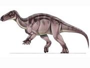 JPI Probactrosaurus.png