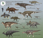 Fauna of the Oldman Formation