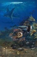 Flint hills discovery center permian sea