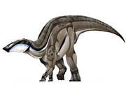 JPI Naashoibitosaurus.png