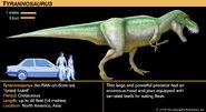 T-rex fact card