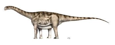 AragosaurusSP.jpg