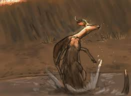 Enhydriodon dikikae