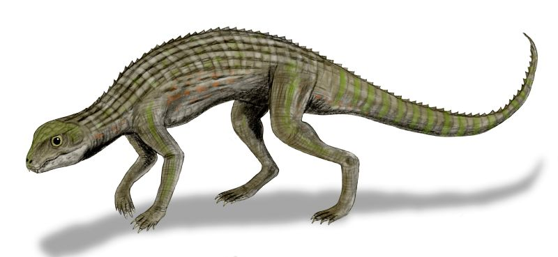 Adamantinasuchus
