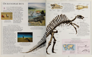 All about Ouranosaurus