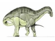 JPI Dicraeosaurus