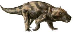 Cynognathus1.jpg