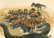 Hallett-Triceratops-herd-1000x708