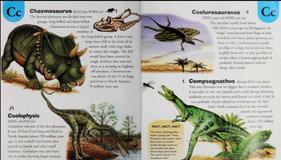 Coelurosauravus