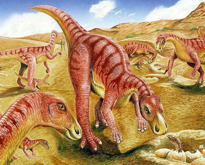 Gilmoreosaurus