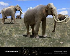 Mammuthus-columbi.jpg