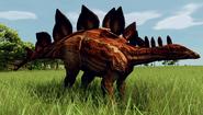 Stegosaurus stenops (Creekbed)