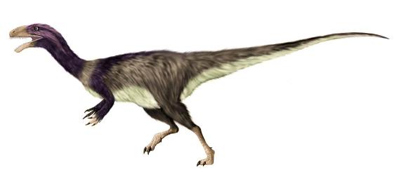 Noasauridae
