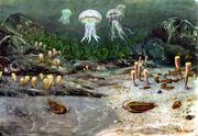 The cambrian sea by zdenek burian 1951.jpg